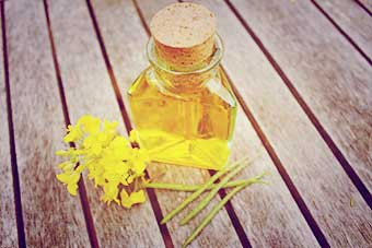 The Cotswold Soap Co. Rapeseed Oil